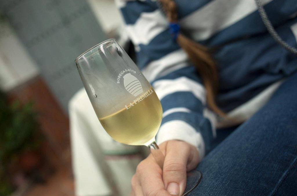 vinos de tinaja lagar la primilla we love montilla moriles cordoba