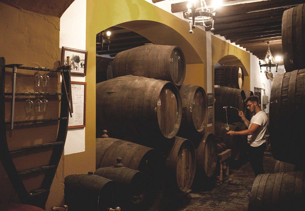 vinos de tinaja lagar casablanca we love montilla moriles cordoba