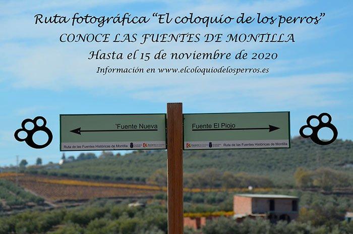 Ruta Fotográfica por las fuentes históricas de Montilla - we love montilla moriles