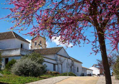 ruta monturque pueblos con vistas panoramicas we love montilla moriles cordoba