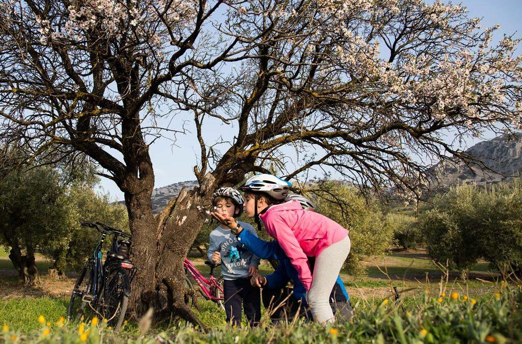 3 planes divertidos para familias con niños en Montilla Moriles (Córdoba)