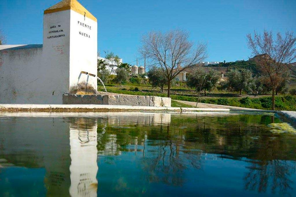 fuente nueva ruta we love montilla moriles cordoba