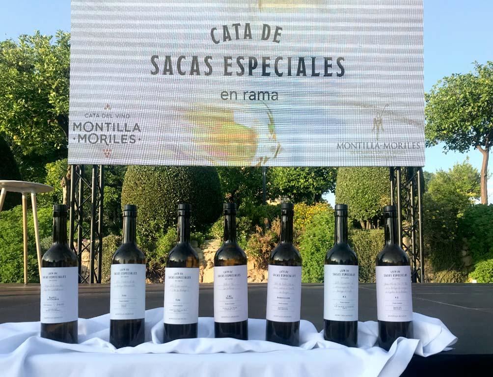 vinos cata de sacas especiales en rama we love montilla moriles cordoba