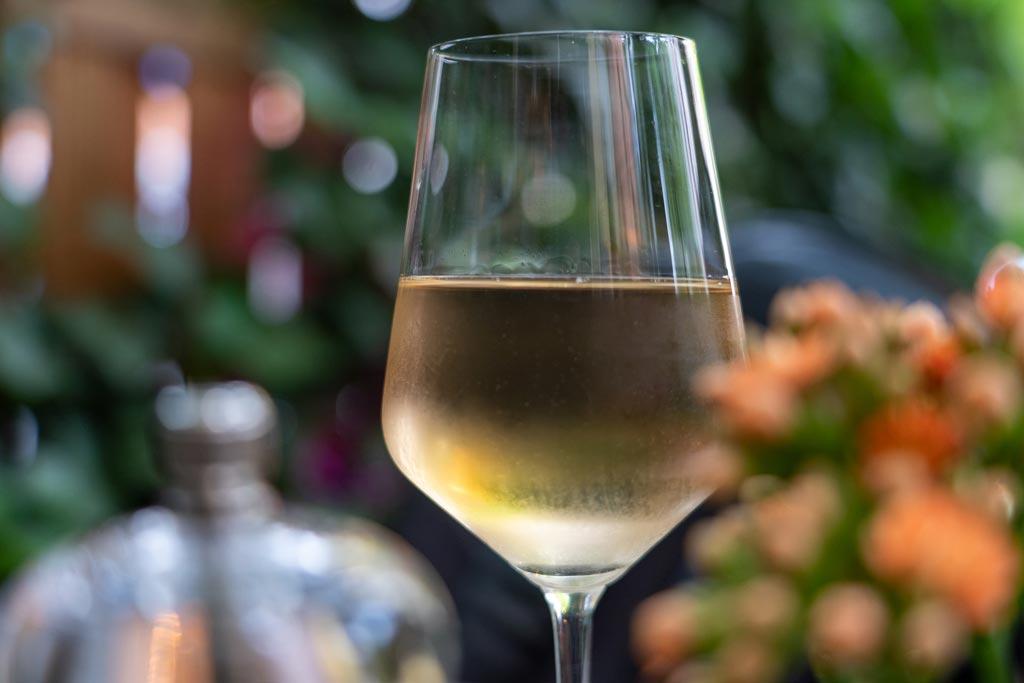 vinos para una noche de verano - we love montilla moriles cordoba