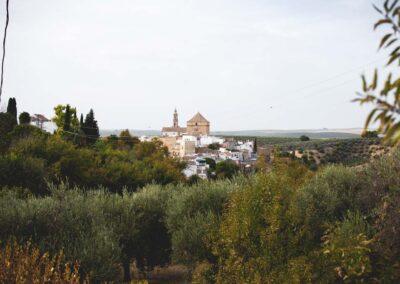 Vista de Santaella, Córdoba - We love Montilla Moriles
