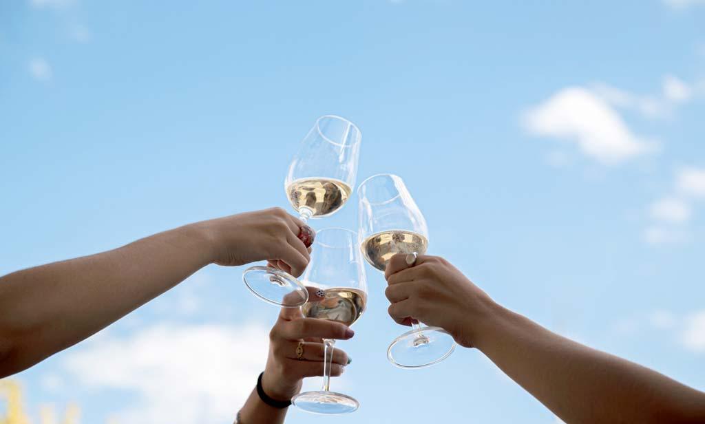 viña verde, la cepa montillana - we love montilla moriles