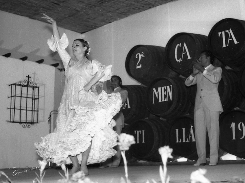 Cata Flamenca 4, Montilla, Córdoba - We love Montilla Moriles