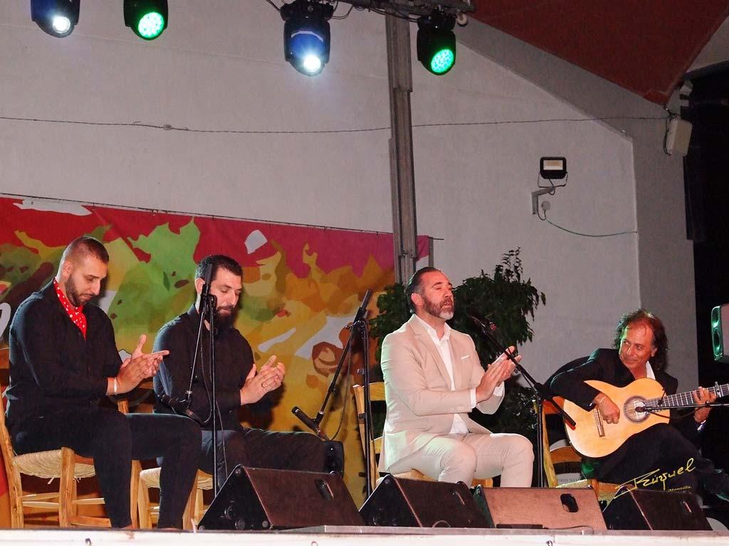 Cata Flamenca 10, Montilla, Córdoba - We love Montilla Moriles