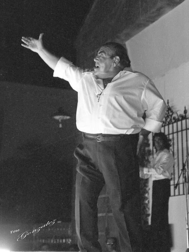 Cata Flamenca 2, Montilla, Córdoba - We love Montilla Moriles