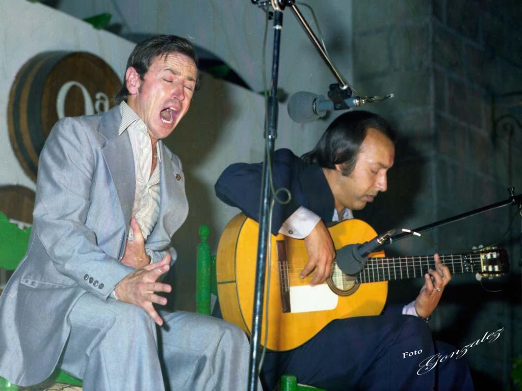 Cata Flamenca 9, Montilla, Córdoba - We love Montilla Moriles